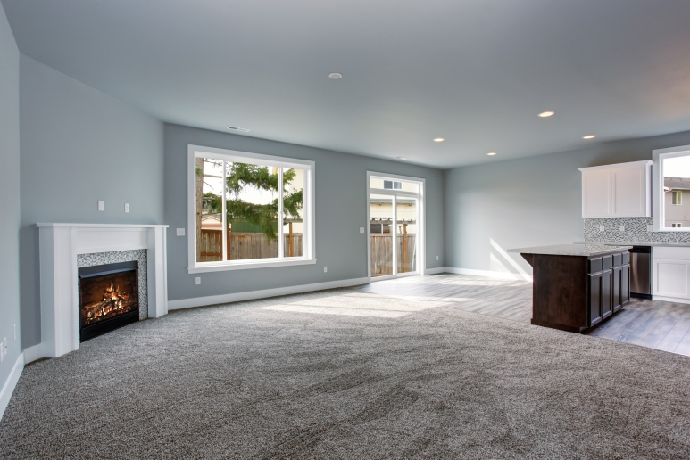 Carpet Family Room